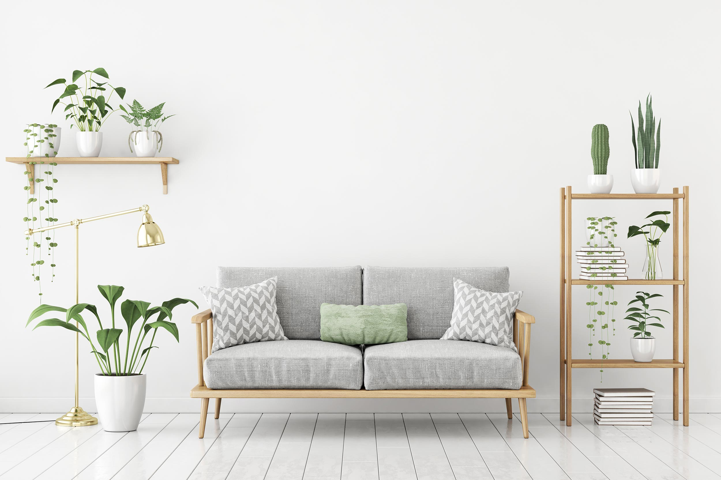 Living room: a couch and some plants on shelves